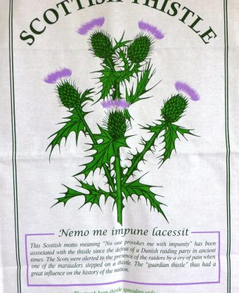 Thistle - Tea Towel-0